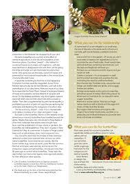 native plants for butterflies forest u0026 bird magazine 352 may 2014 by forest u0026 bird issuu