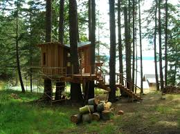 large tree houses with cool wooden tree houses on pine tree
