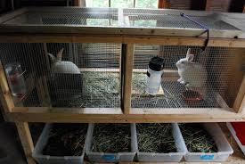 Rabbit Hutch Diy Rabbits Farm In The Forest