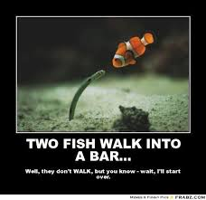 Funny Fish Memes - 24 hilarious fish memes proving you can be funny without even