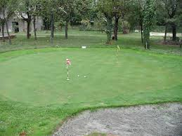 how to make a diy backyard putting green images on remarkable