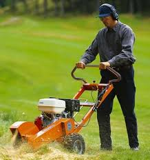 stump grinder rental near me stump grinder push rentals sterling va where to rent stump
