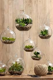 Indoor Hanging Garden Ideas Indoor Hanging Garden Glassnyc Co