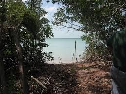 belize real estate for sale viva tropical