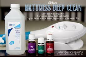 Living With Bed Bugs Mattress Deep Clean Our Oil Well Young Living Essential Oils