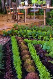 Gardening Ideas Pinterest 13 Steps To A Pinterest Ready Garden
