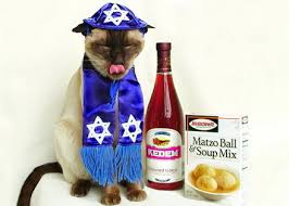 Passover Meme - 10 reasons why you re dreading passover seder neon tommy