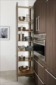 Kitchen Sliding Shelves by Kitchen Pantry Cabinet With Pull Out Shelves Pull Out Drawer