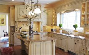 kitchen cabinets houston texas maxbremer decoration