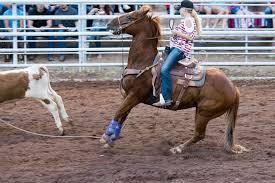 spirit halloween saint george utah rodeo day a hometown u0027s journey to the crown u2013 st george news