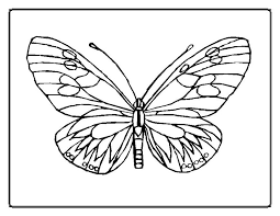 printable kangaroo coloring pages best coloring pages