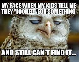 ad96e41e509d88c1a funny mom memes kids mom funny humor mojly
