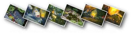 Ohio Waterfalls Map by Ohio Pond Installation Maintenance Contractors Builders Installers