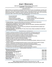 Example Of Accountant Resume by Best 20 Cv Resume Sample Ideas On Pinterest Cv Format Sample