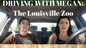 driving with megan the louisville zoo youtube