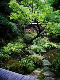 best 25 japanese gardens ideas on pinterest japanese garden
