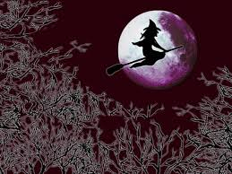 halloween background gif flying witch wallpaper