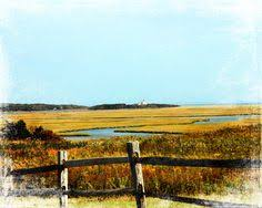 Nauset Marsh Cape Cod - fort hill marsh view eastham cape cod vacation rental on
