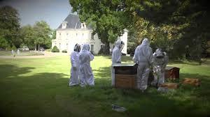 siege social maison du monde ruches maisons du monde première récolte
