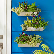 Plants And Planters by Easy Planter Boxes U0026 Potted Plants