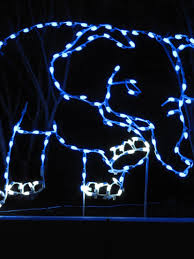 Zoo Lights Az by Happy New Year 2013 From The