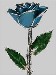 dark blue lacquer and platinum plated rose gold roses platinum