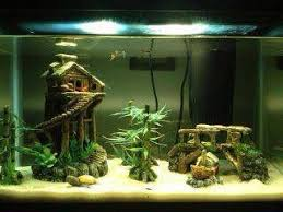 asian jungle themed fish tank i used standard store bought decor