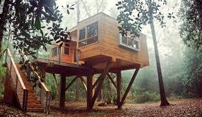100 treehouse rooms 149 catspjs tree house jpg treehouse