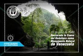 imagenes monumentos naturales de venezuela cueva del guácharo monumento natural de venezuela el bucare