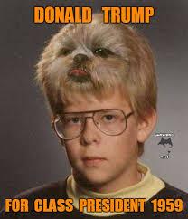 Junior Meme - trump for junior high class president imgflip