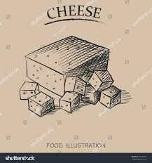 graphic hand drawn cheese sketch vector stock vector 539309221