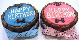happy birthday bone cake treat treats bakery posh puppy boutique