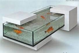 exclusive aquarium ideas for an attractive home renomania