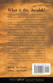 the messianic passover haggadah behold the messianic passover haggadah word ministries