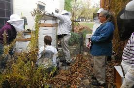 Urban Gardening Philadelphia - urban agriculture leads the way in philadelphia co op stronger