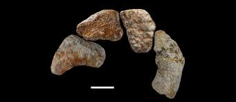 the earliest known titanosauriform sauropod dinosaur and the
