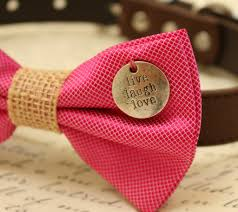 pink dog bow tie brown dog collar pinklovers la dog store