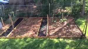Mulching Vegetable Garden by Back To Eden Wood Chip Vegetable Garden Update Youtube