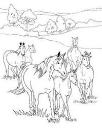 horse coloring pages tons nice coloring