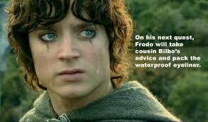 Frodo Meme - its a dead ringer frodo dun goof d