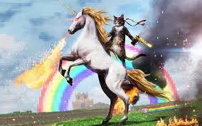 Funny Meme Desktop Backgrounds - flames guns internet cats ninjas animals smoke unicorns funny