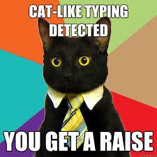 Typing Meme - cat like typing detected cat meme cat planet cat planet