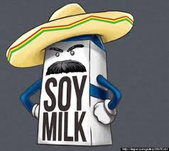 Funny Memes Spanish - funny spanish memes stripey spanish