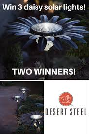desert steel solar lights desert steel daisy solar light giveaway gardening know how s blog