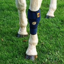 pair of magnetic horse tendon knee u0026 hock boot wraps magnetic