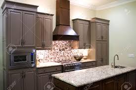 dark wood kitchen cabinets modern kitchen white modern kitchens aster cabinets dark wood