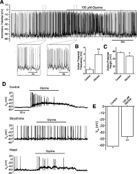 a glycine insulin autocrine feedback loop enhances insulin