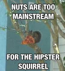 Squirrel Meme - i want to be a hipster squirrel meme by dionevers209 memedroid