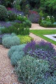 best 25 pebble garden ideas on pinterest succulents garden