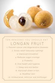 lychee fruit candy best 25 lychee benefits ideas on pinterest lychee health
